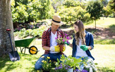 La thérapie de couple ou jardiner sa relation